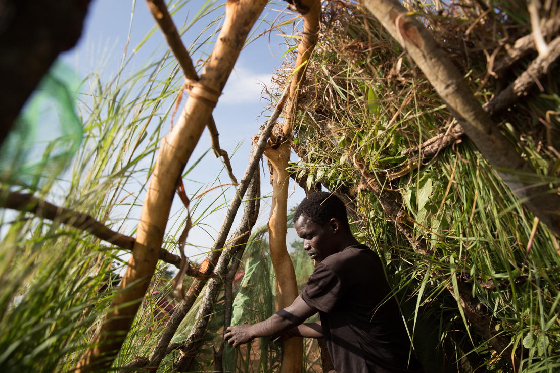 A man builds a shelter. Over 5.800 Mozambican nationals have camped in the village of Kapise 2 in Malawi after fleeing their homes in Mozambique. The overcrowding and the nature of the makeshift constructions in the camp, made of foraged wood and grass, make it a fire hazard. © James Oatway / MSF