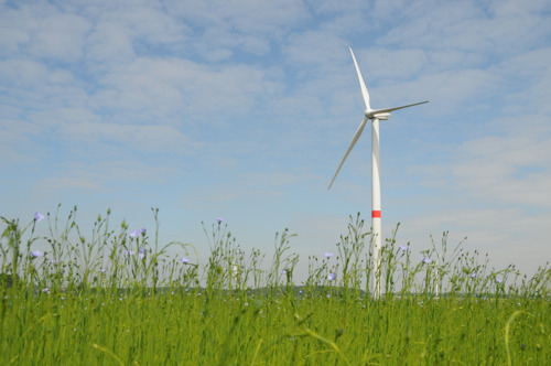 Project for 5 new wind turbines in the industrial park of Feluy