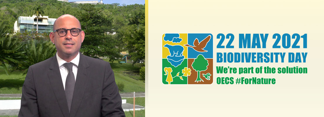 International Day for Biological Diversity - Address by Minister Stiell
