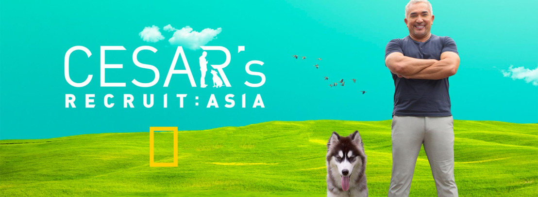 Tips for New Dog Owners from Cesar's Recruit: Asia Season 1 Winner, Ethan Loke