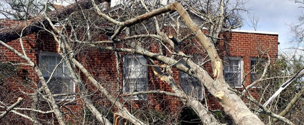 Preview: Recordaantal schadedossiers na stormen in 2020