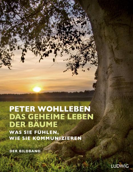 """Preview: Einladung zur Lesung: Peter Wohlleben liest aus seinem Bestseller """"Das geheime Leben der Bäume"""""""