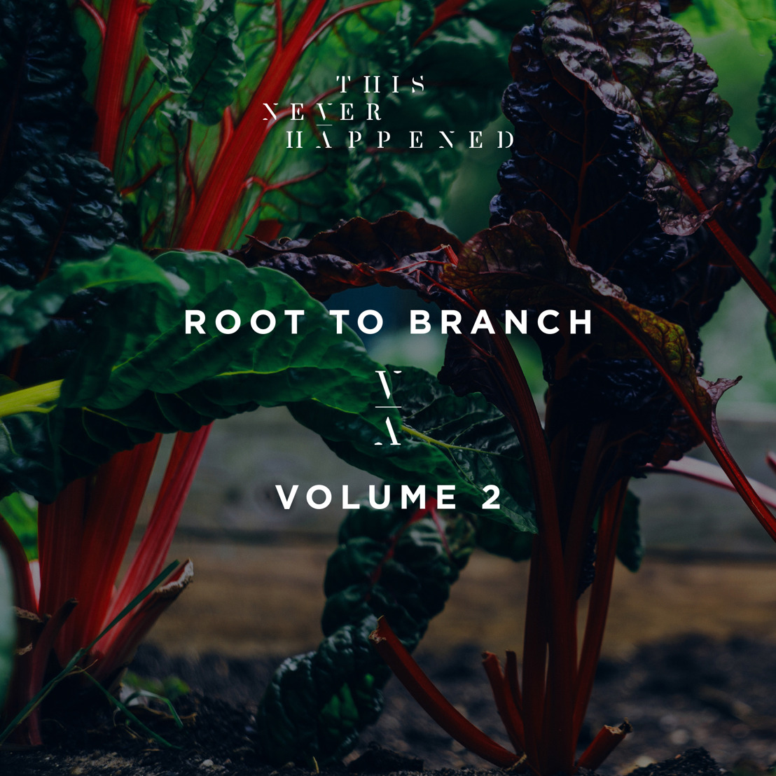 Lane 8 Releases Root To Branch Vol. 2