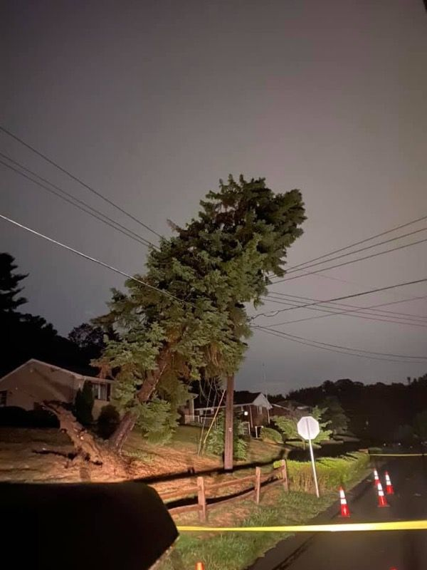 Photo of damage in Shaler, one of the hardest-hit areas during last night's storm