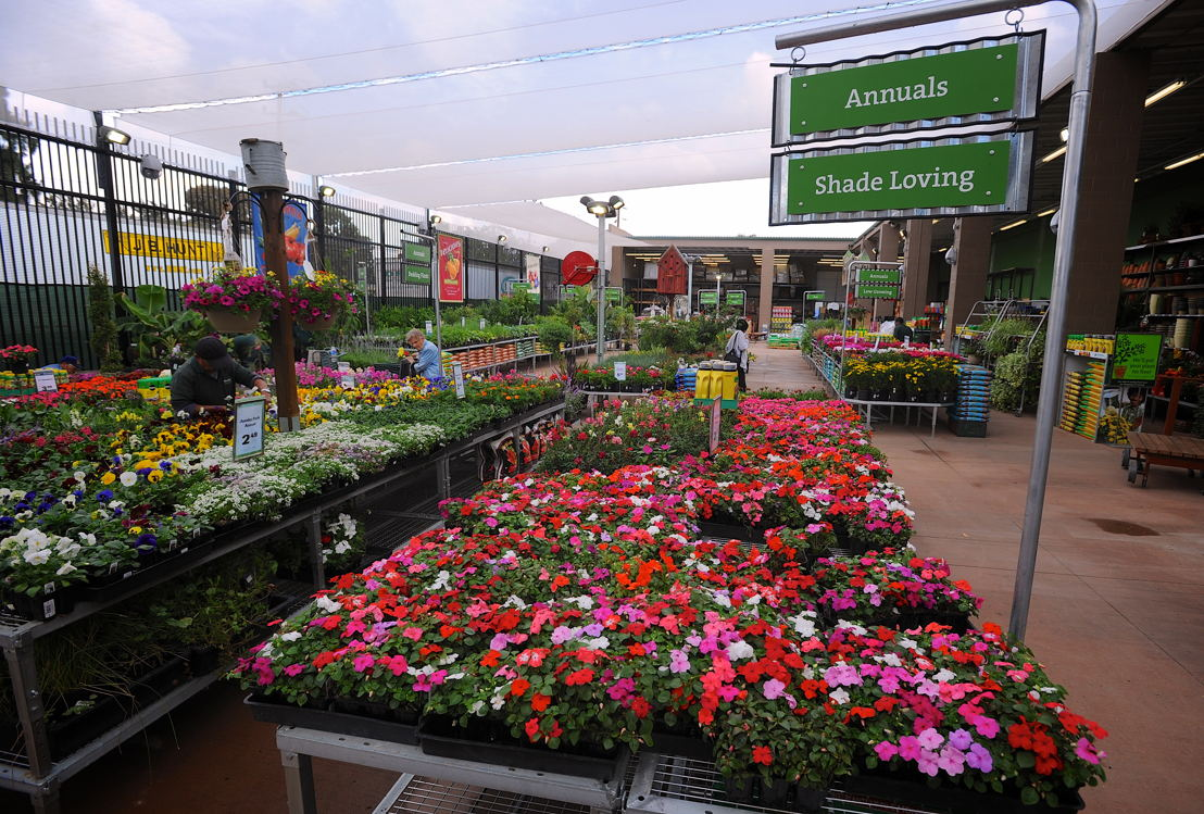 The store's nursery has been expanded by 5,000 square feet.