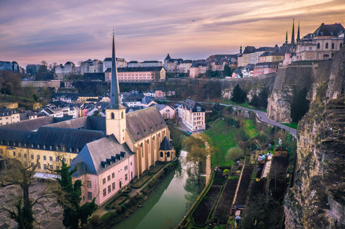 Positive recommendation Luxembourg School of Business