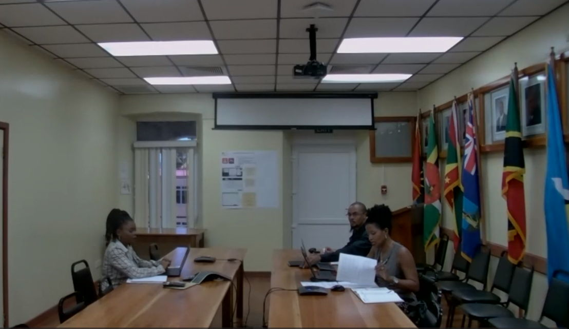 Participants joining the virtual meeting from the OECS Headquarters in Castries, Saint Lucia.