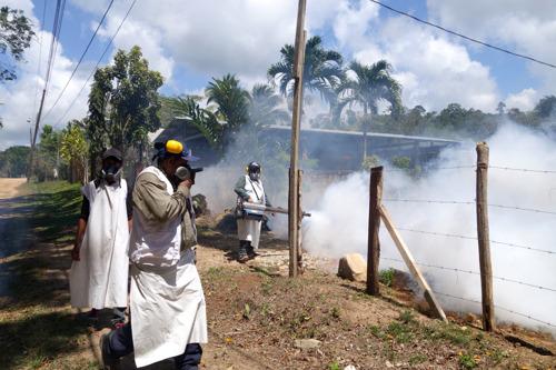 Honduras: MSF reagiert auf neue Dengue-Fieber-Epidemie