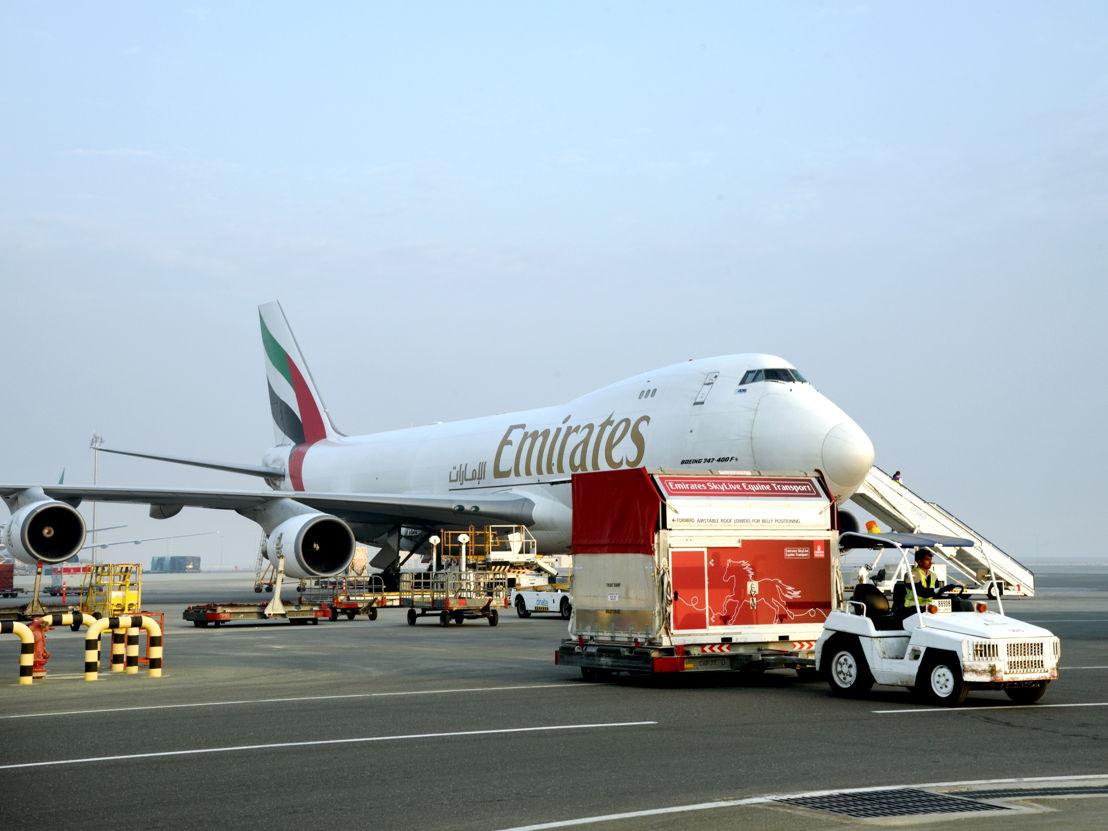 الإمارات للشحن الجوي تنقل أشهر خيول سباق كأس دبي العالمي
