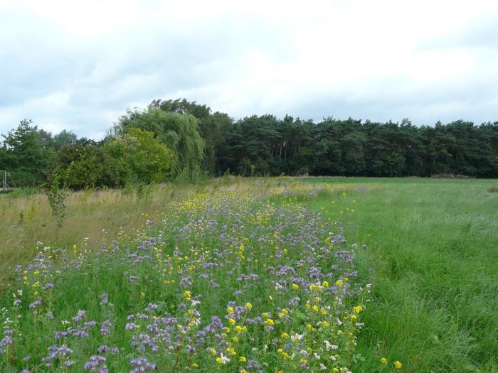 Provincie Oost-Vlaanderen geeft subsidies voor imagoversterkende initiatieven in de land- en tuinbouw