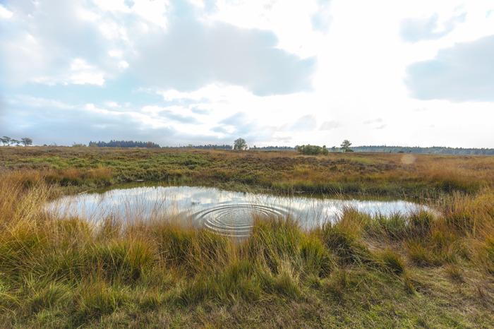 50 ans du partenariat public-privé à Spa pour la protection du patrimoine hydrique