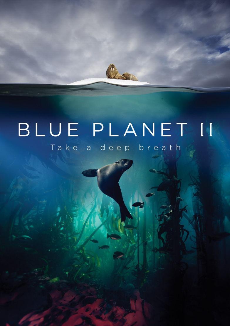 Blue Planet - (c) BBC