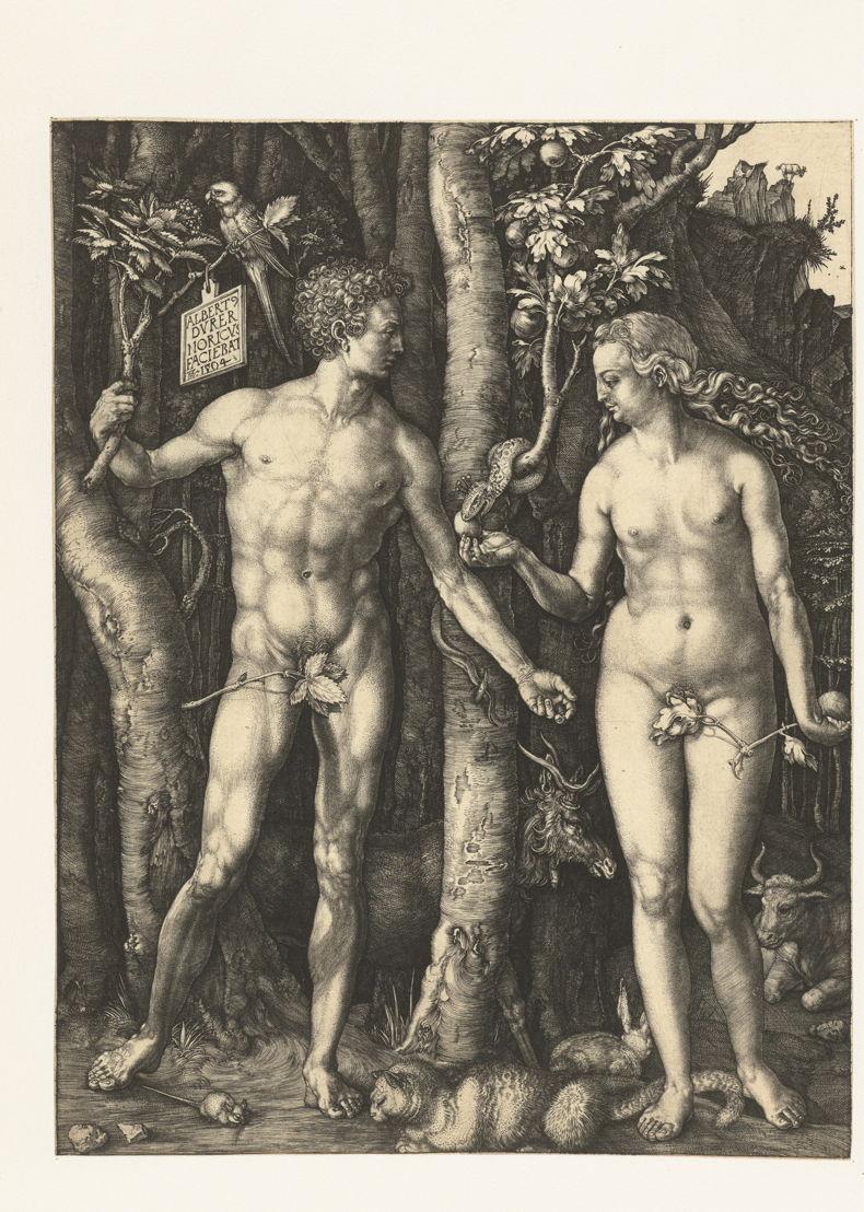 © Albrecht Dürer, Der Sündenfall, Nürnberg, 1504. Amsterdam, Rijksmuseum, Reichskupferstichkabinett.
