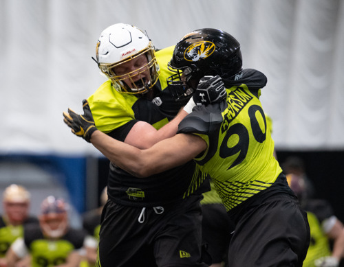 2019 CFL DRAFT RESOURCES
