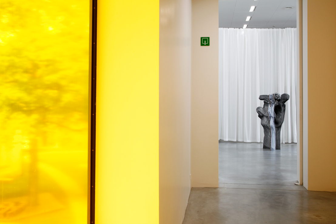 Gelbes Fenster (2005) & Katzenbaum (2016) © 2016 KK / www.document-architecture.com