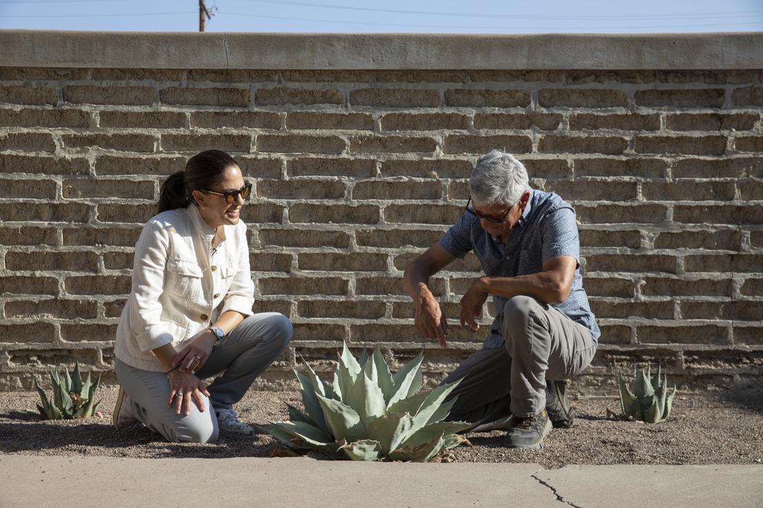 Judd Foundation abre las puertas de Agave Garden a la comunidad