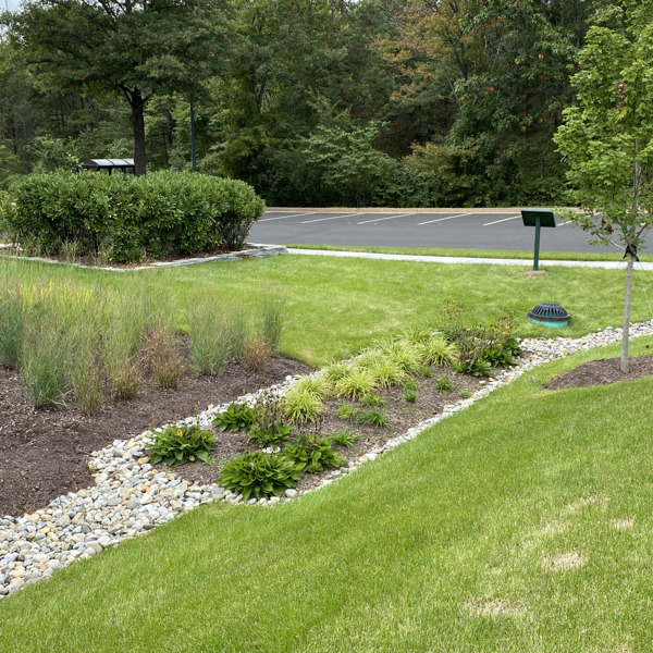 Preview: Cumberland County Soil & Water Conservation District named first Urban Green Infrastructure Challenge winner