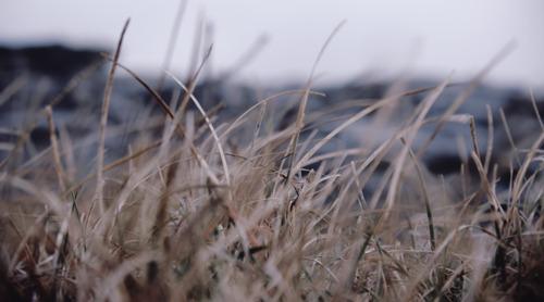 Captatieverbod ecologisch kwetsbare waterlopen