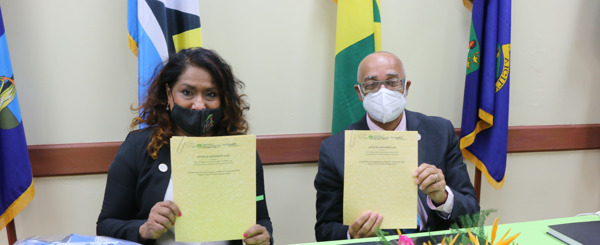 Preview: CARPHA and the OECS collaborate for Healthier, Safer Tourism