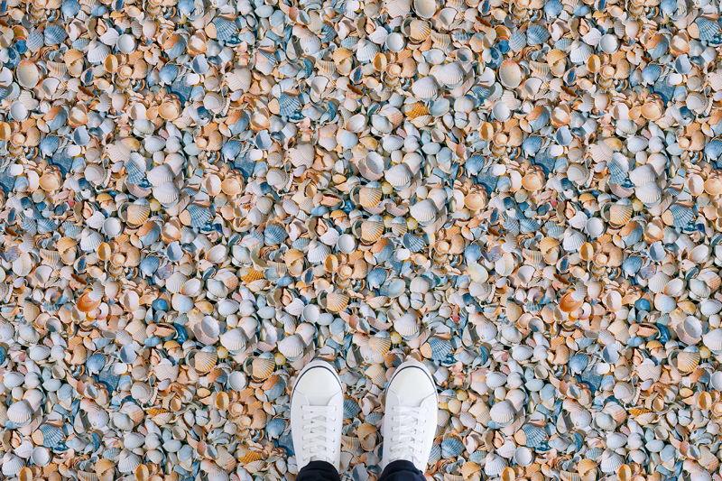 Shell     <br/>Shell Texture Vinyl Flooring