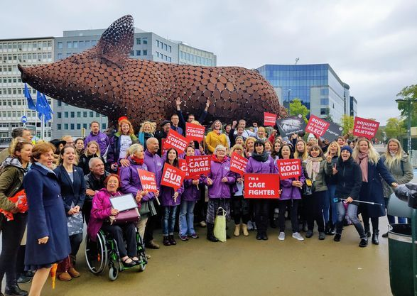 Preview: Het Europees Parlement ondersteunt met overweldigende meerderheid het verbod op kooien voor landbouwdieren.