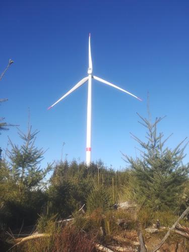 Luminus huldigt op Wereld Wind Dag het windmolenpark van Lierneux officieel in samen met de buurtbewoners