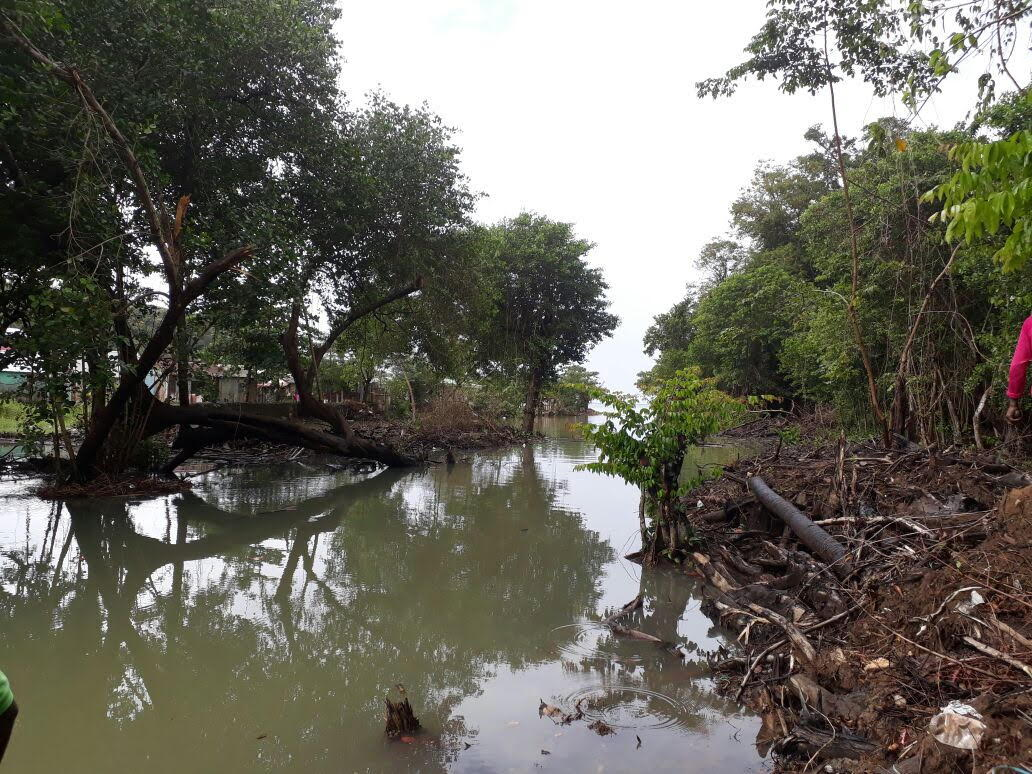 AFTER: Encroaching mangrove is removed and water way is cleared.
