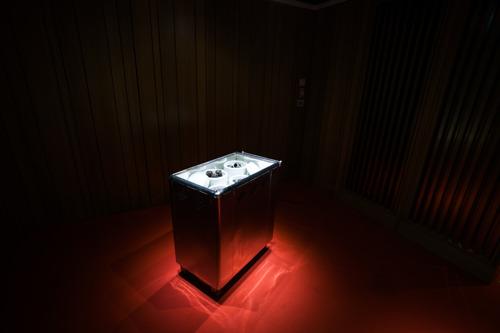 Le Musée Dhondt-Dhaenens organise un gala à emporter inédit, conçu par l'artiste Rirkrit Tiravanija