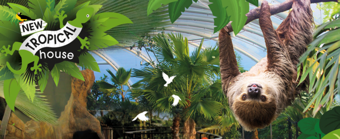 Winchester's Marwell Zoo Debuts £8m Tropical House Powered by Poo