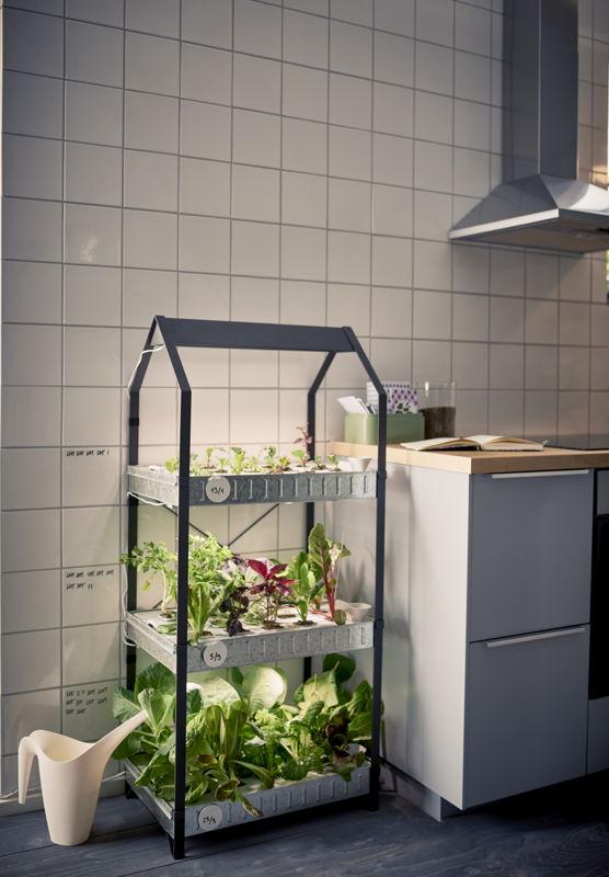 IKEA_KRYDDA_79,90