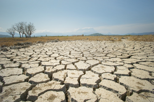 Number of people exposed to extreme drought could double by end of 21st century