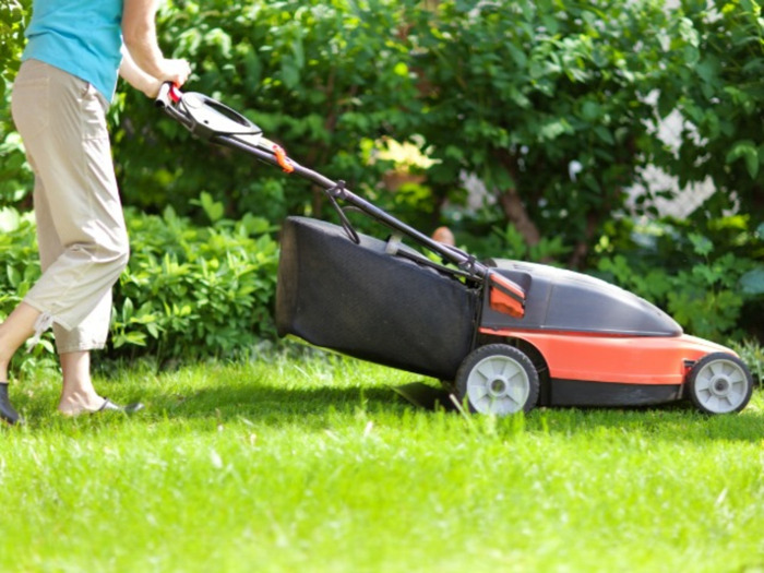 Preview: Do Cordless Electric Lawnmowers Make the Cut?