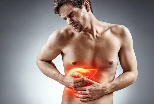 Dierproefvrij geneesmiddelen testen voor leverziekte NASH