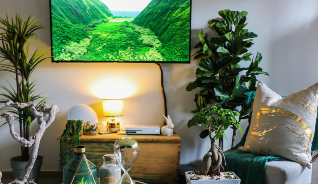 ¿Cómo divertirse sin salir de casa? ¡Descúbrelo con nuevas ideas a través de Pinterest!
