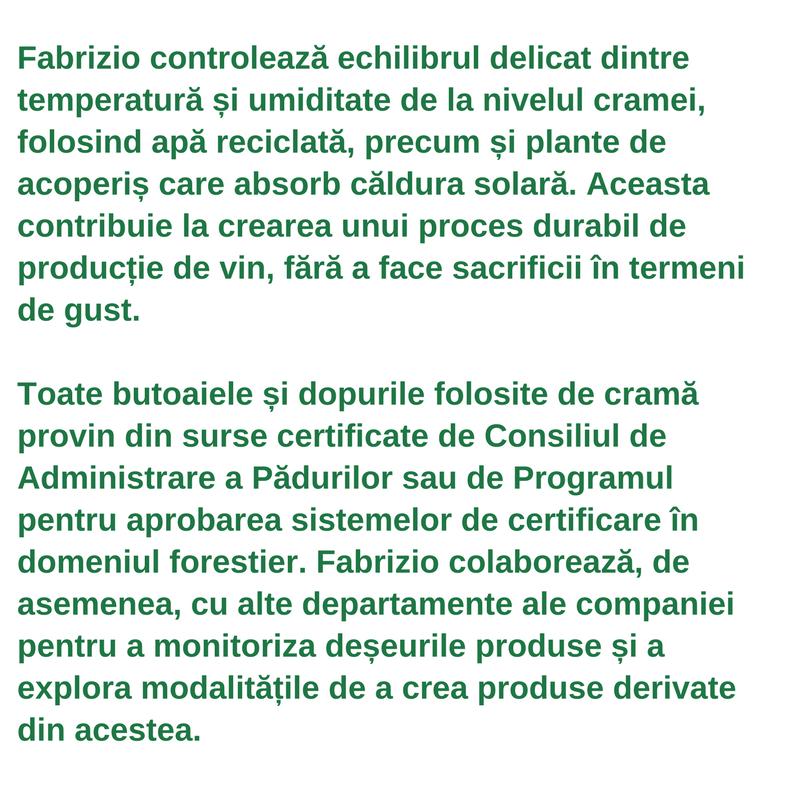 Profilul lucrătorului din sectoarele verzi - Fabrizio Savino