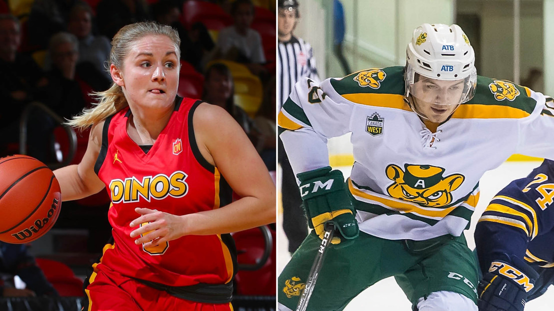 Playoff pictures set for basketball, hockey