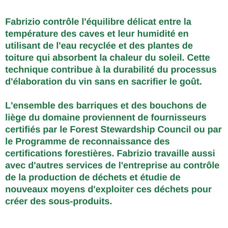 Profil du travailleur vert - Fabrizio Savino