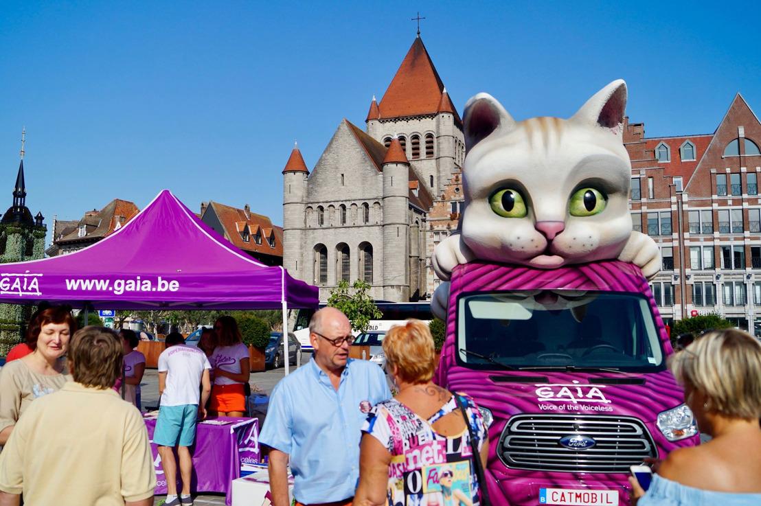 Tournée d'été de GAIA : la « catmobile » a fait étape ce mardi à Tournai