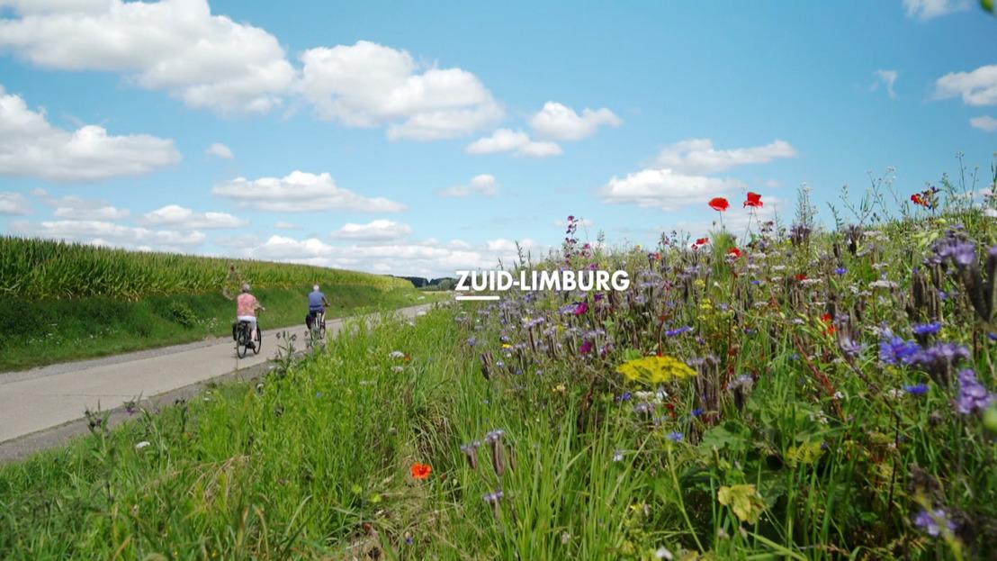 Laatste week Huizenjagers Vakantiehuizen zet in op rust en natuur in Zuid-Limburg