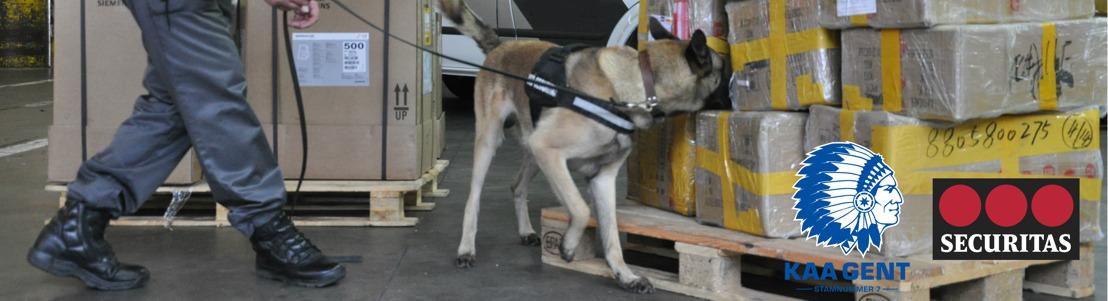 Explosievenhonden speuren naar illegale vuurpijlen
