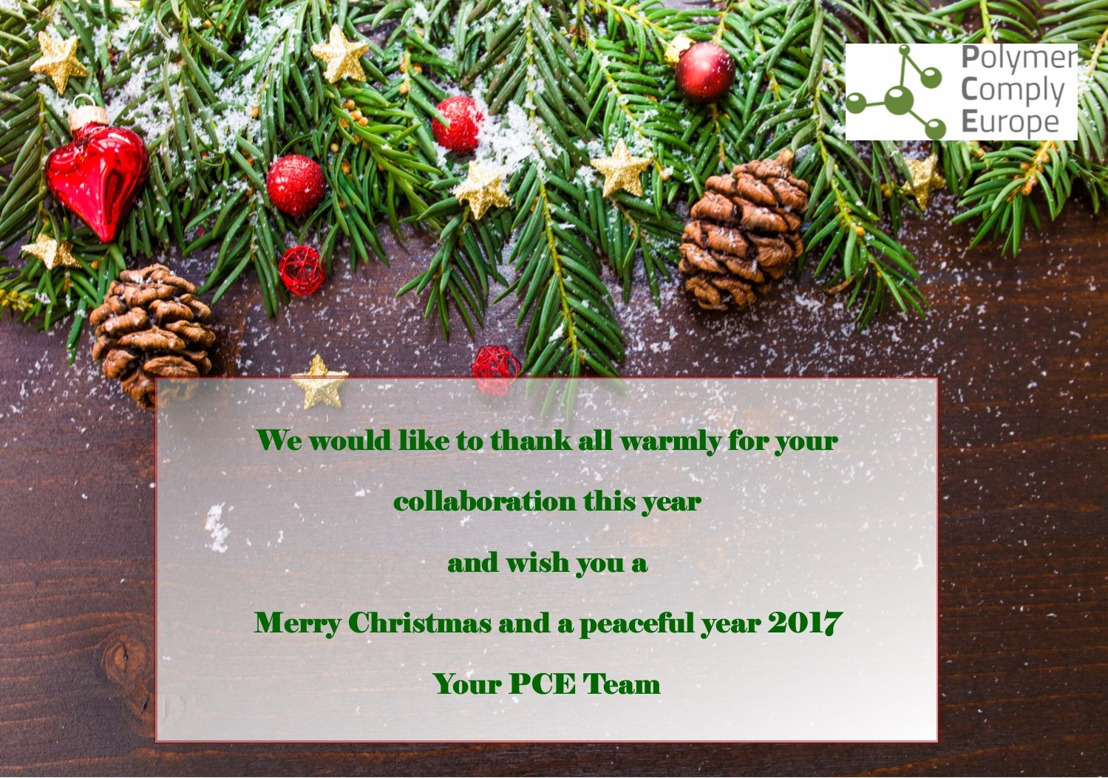 Happy Holidays from the PCE Team