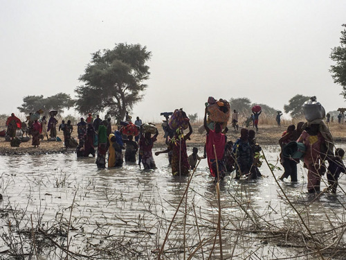 Nigeria: After the attack in Rann on monday, 8000 people seek shelter in Bodo, Cameroon