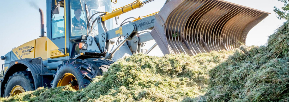 Voormalig boswachtershuis De Fonteyn krijgt dakisolatie van gras