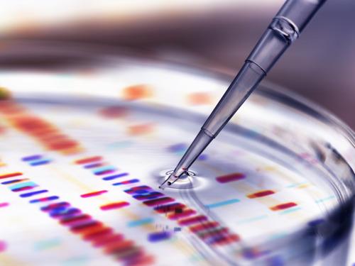 Over Pfizers beslissing inzake neurowetenschappelijk Onderzoek & Ontwikkeling