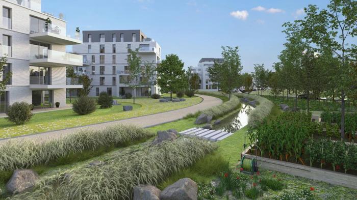 Premier pas vers le village urbain qui remplacera la friche industrielle d'Arjo Wiggins à Nivelles