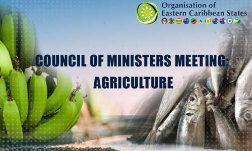 OECS Agriculture Ministers Discuss Recovery and Transformation of the Sector