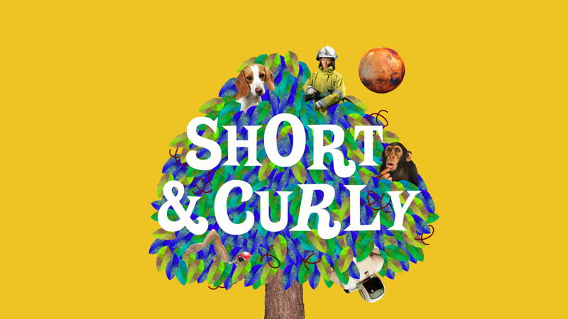 Short & Curly RC