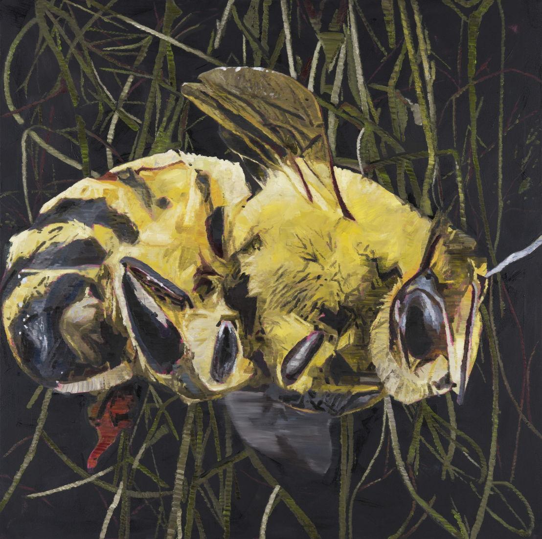 'Caught in the dark', Greg Van Staey, winnende schilderij