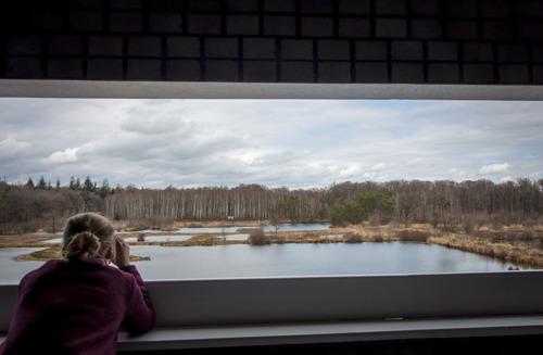 Nieuwe uitkijkpunten brengen de bezoeker dichter bij natuurgebied Aanwijsputten