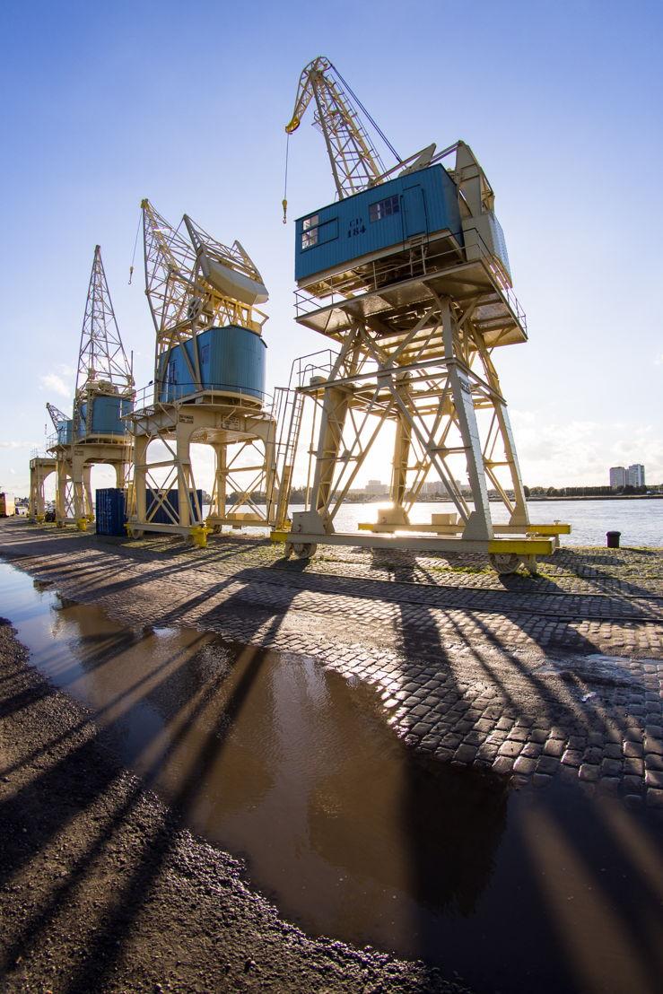 Antwerp Cranes © Roel Hendrickx